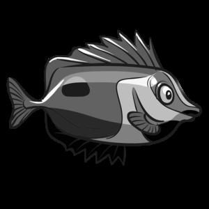 Quarantined Fish